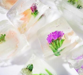 Eiswürfel mit Beeren oder essbaren Blüten sind eine tolle Hochzeitsdeko und sorgen für Abkühlung